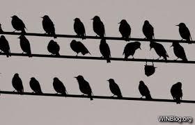 non conform